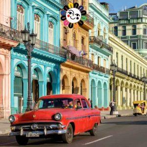 L Avana